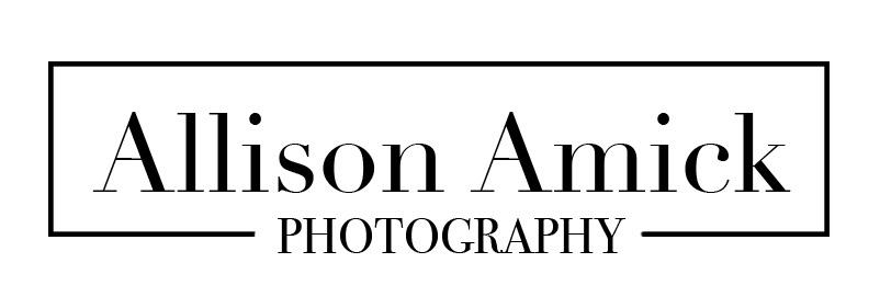 Allison Amick