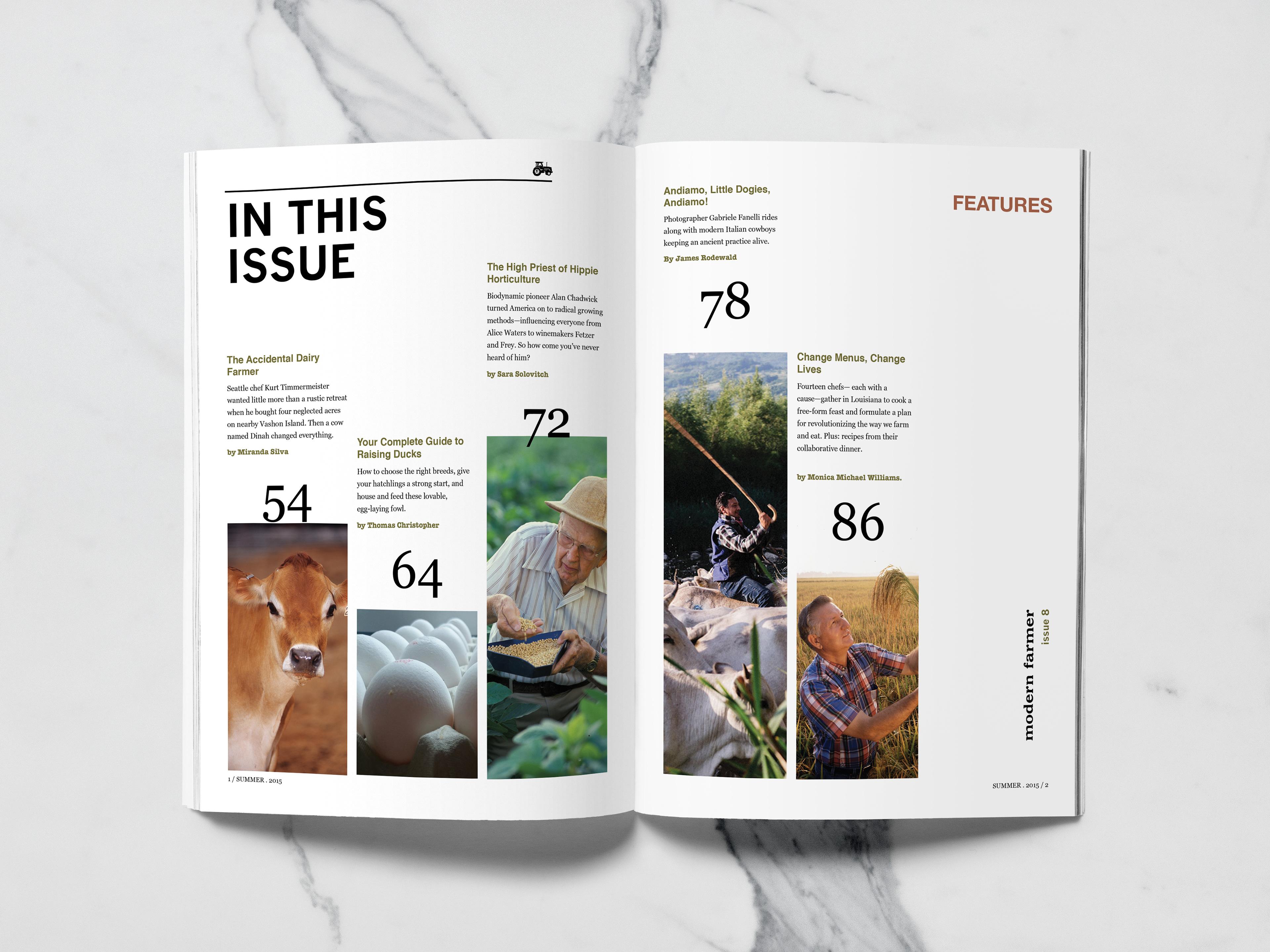 Danielle Thomas Portfolio Table Of Contents