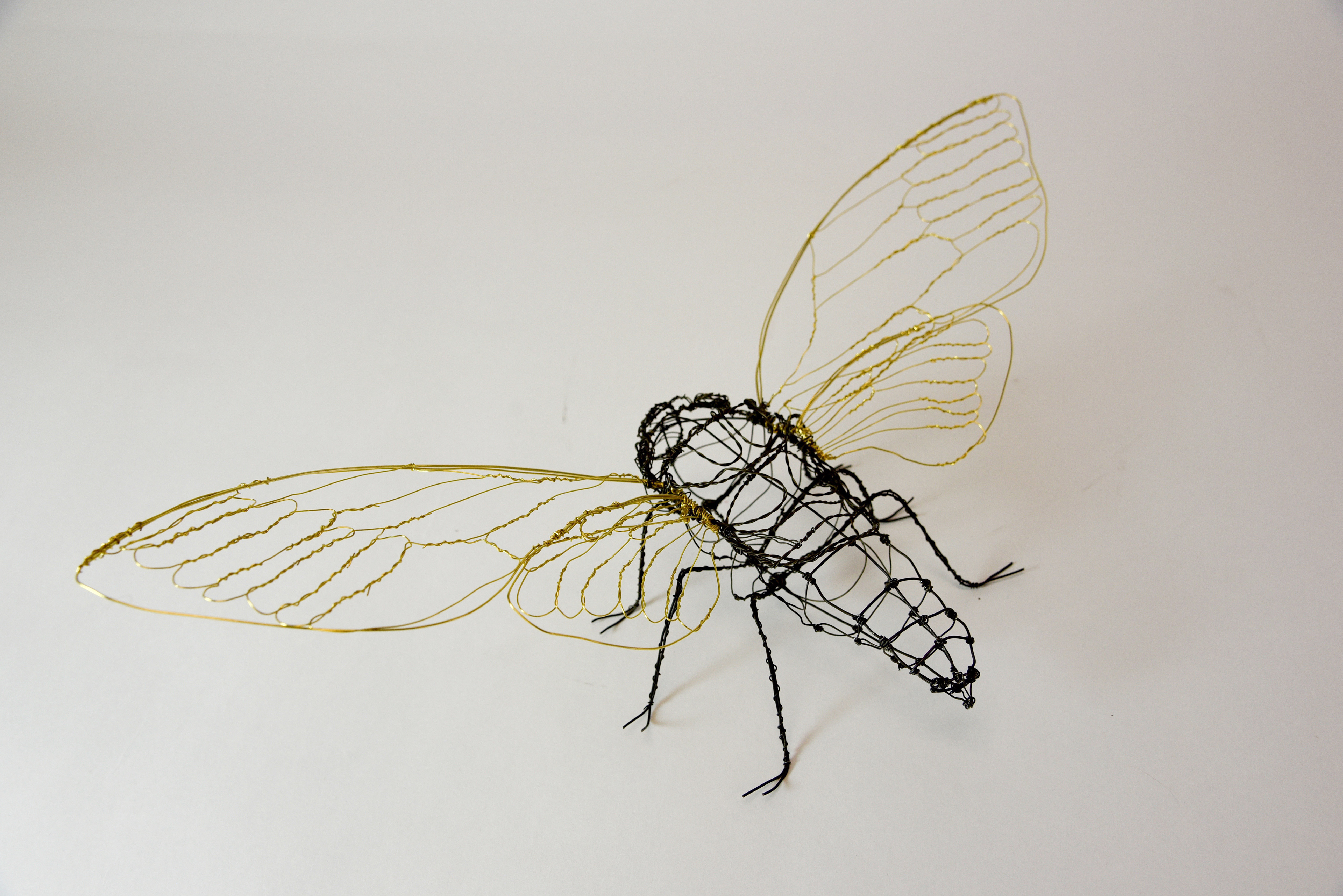 Amazing Copper Wire Insects Model - Electrical Diagram Ideas ...