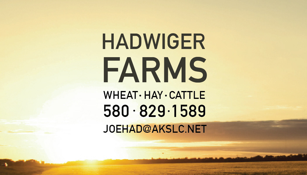 Jayna hadwiger hadwiger farms business cards colourmoves