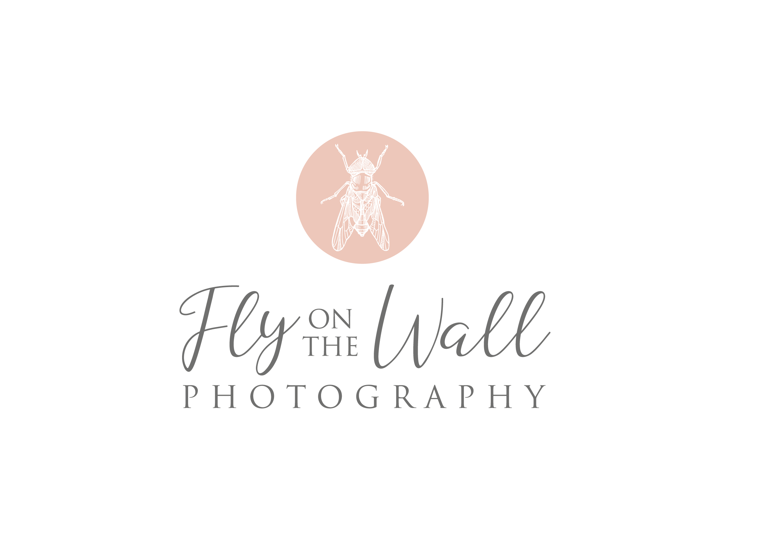 Fly on the Wall Photography