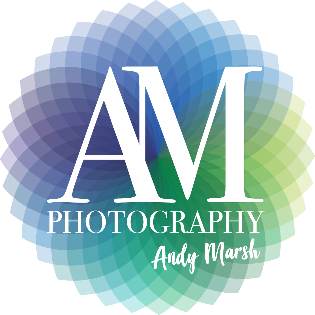 Andy Marsh