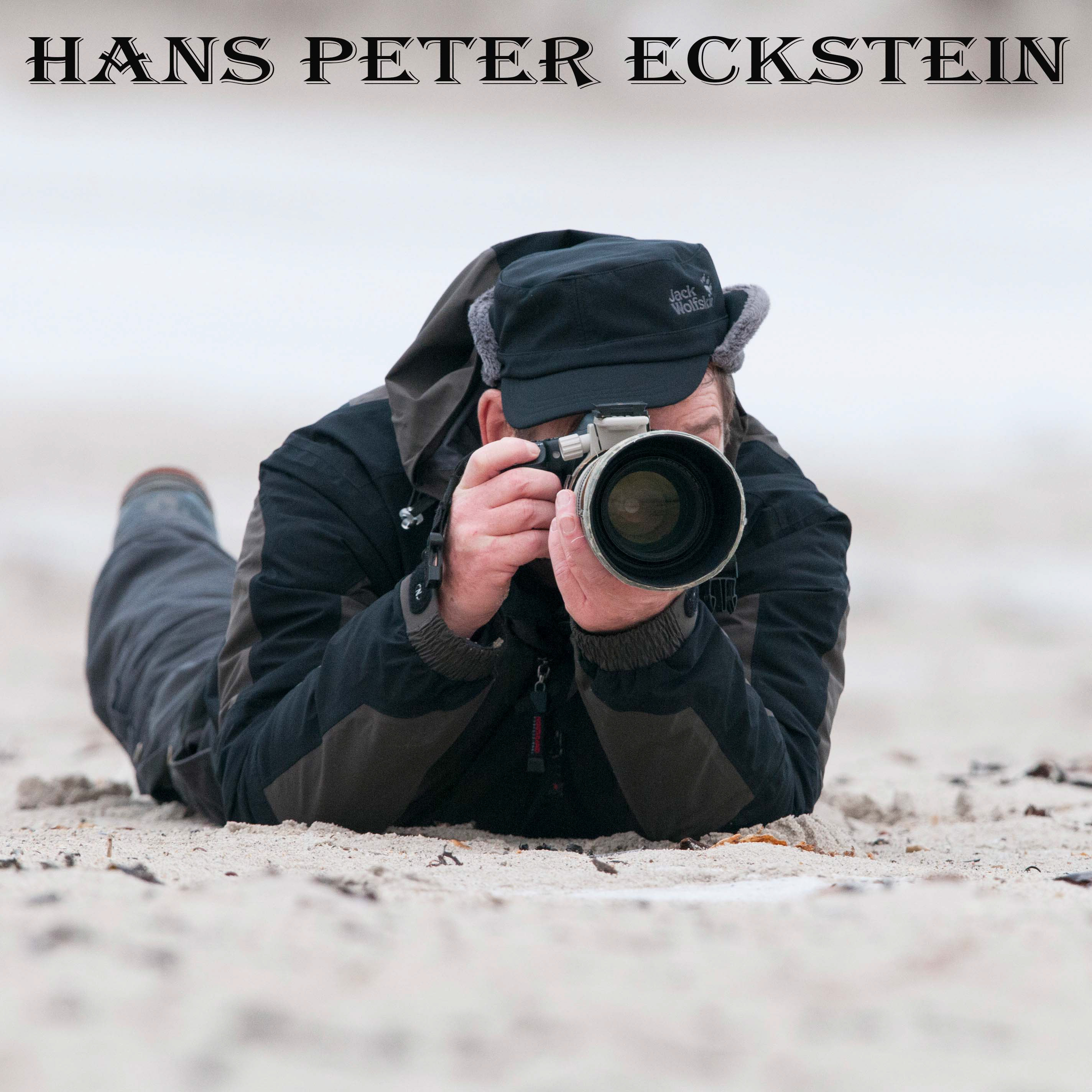 Hans Peter Eckstein