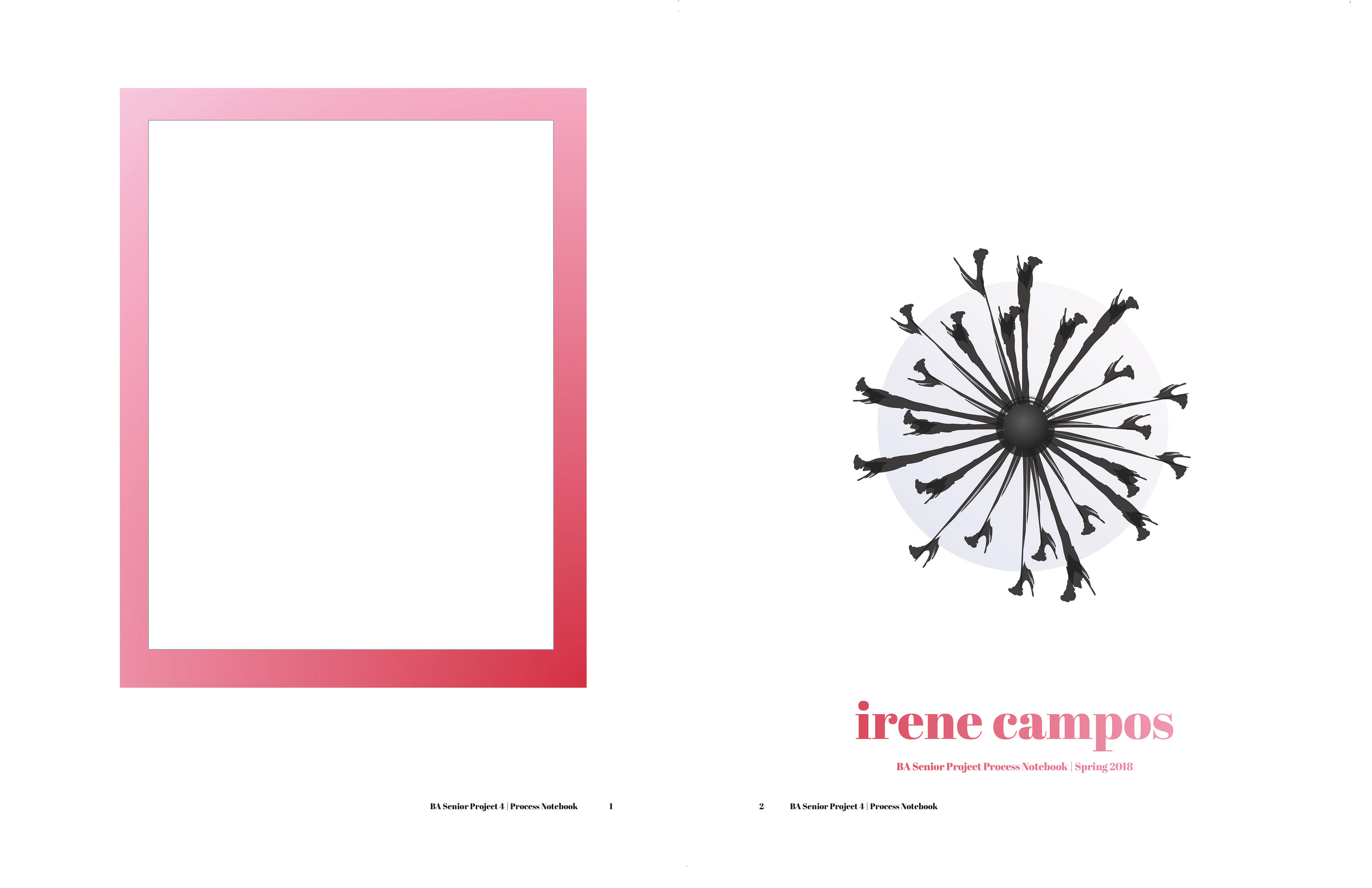 Irene Campos - dsgn 197: project 4 - process notebook